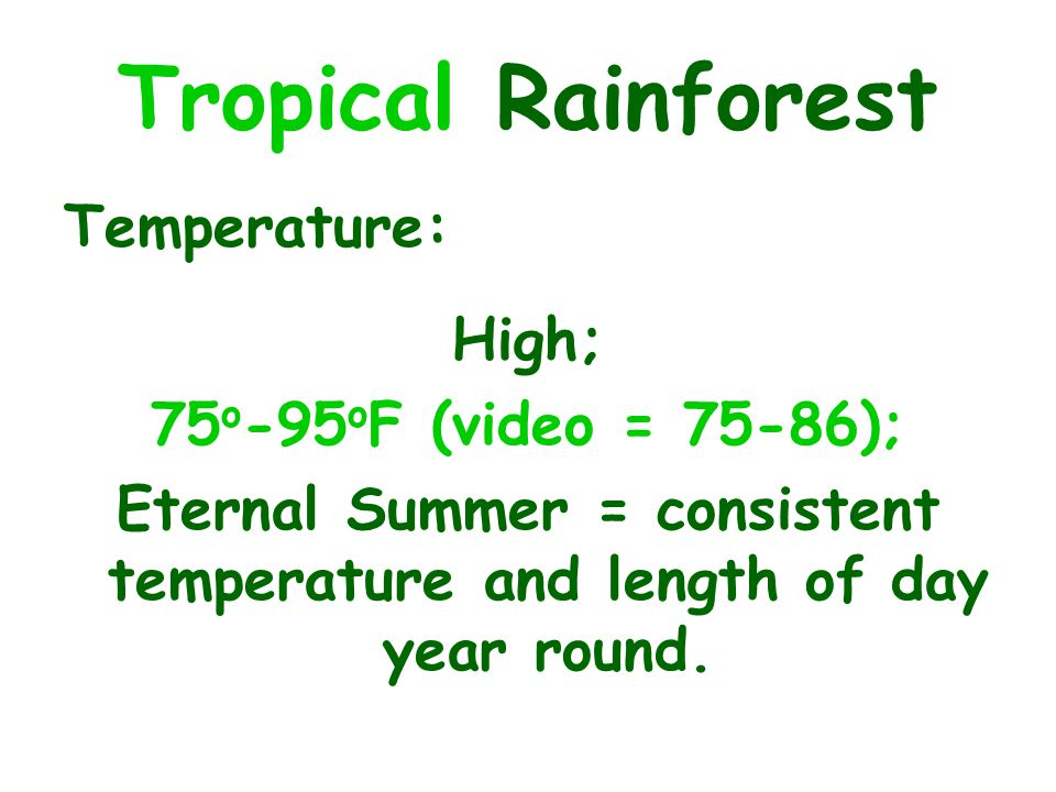Eternal Summer = consistent temperature and length of day year round.