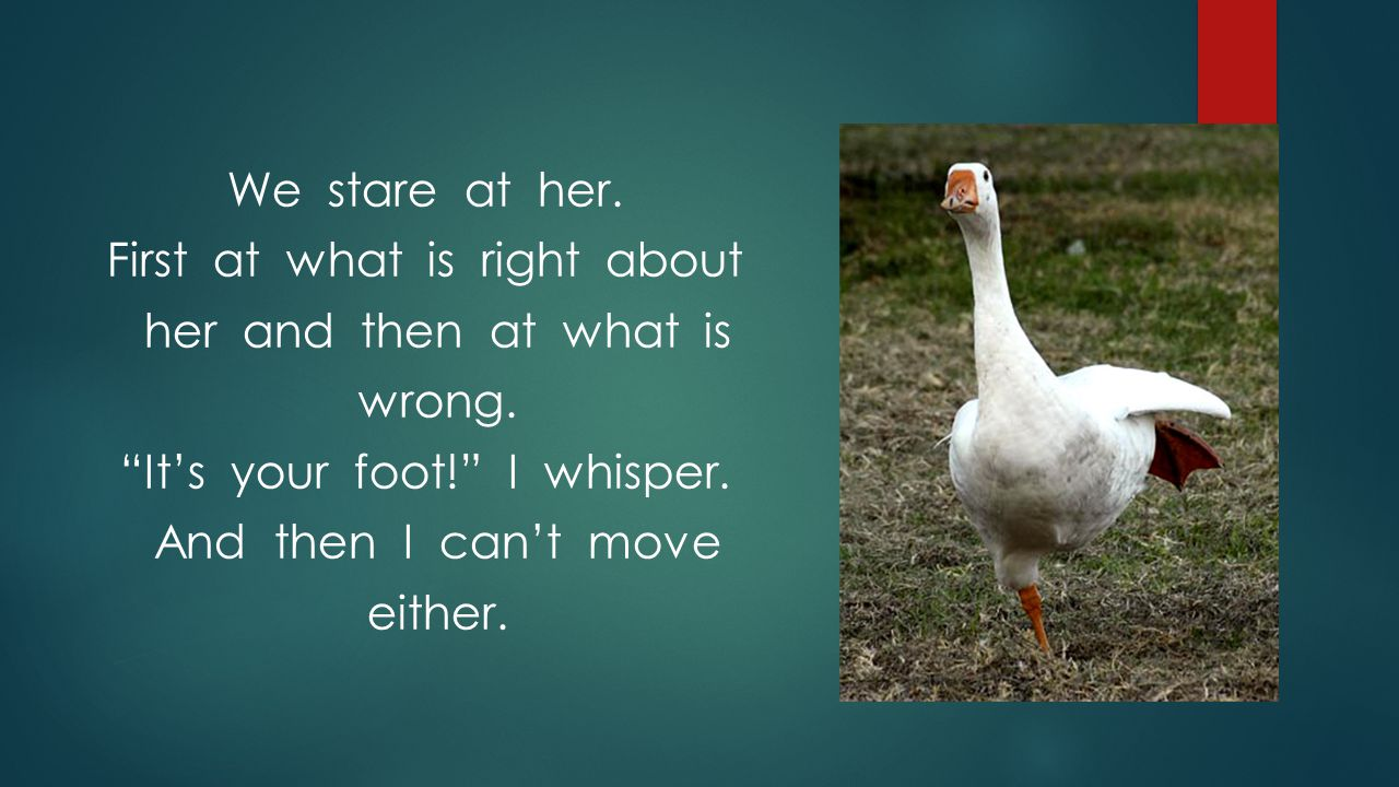 We stare at her. First at what is right about her and then at what is wrong.