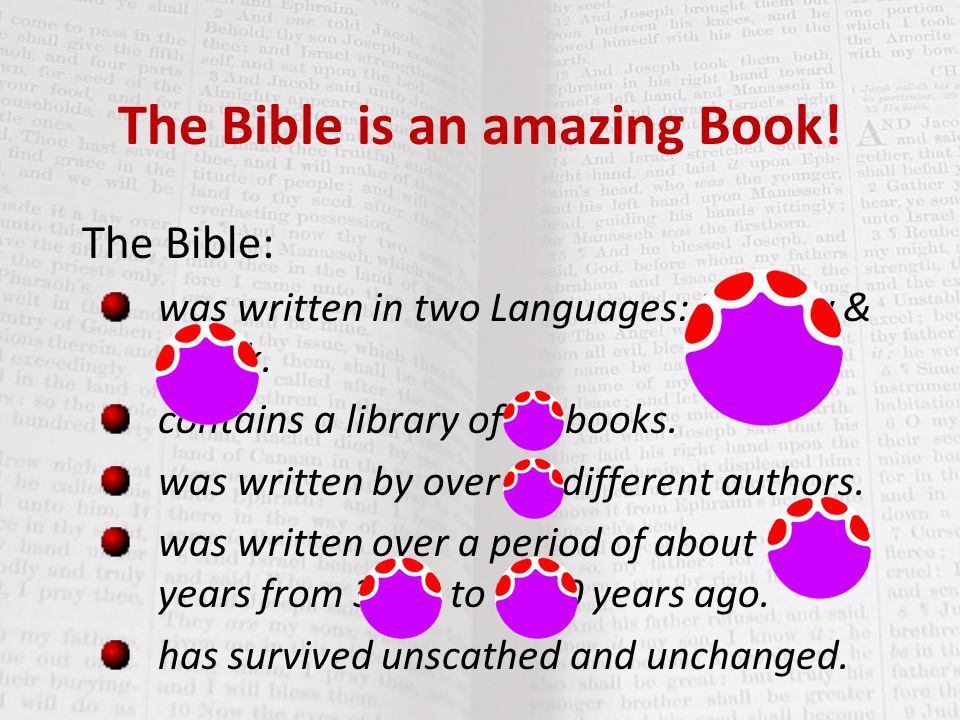 The Bible is an amazing Book!