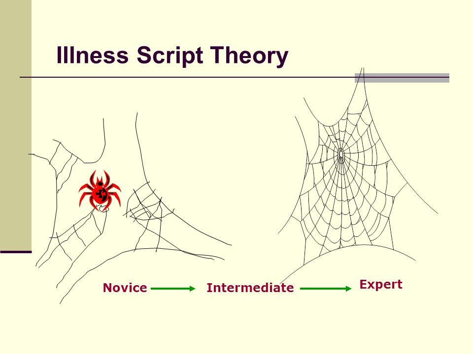 Illness Script Theory Expert Novice Intermediate Novice