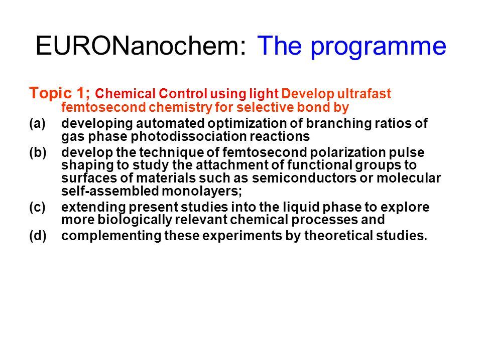EURONanochem: The programme