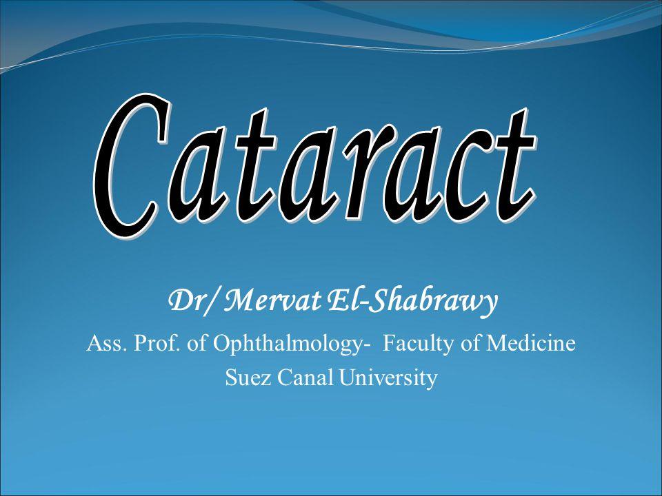 Dr/ Mervat El-Shabrawy