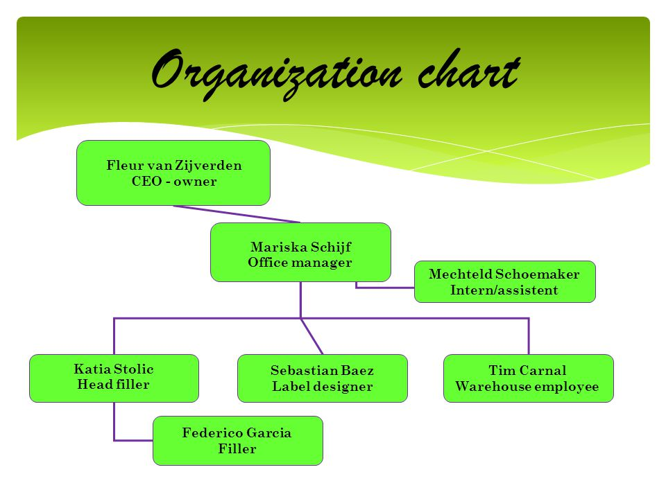 Organization chart CEO - owner Mariska Schijf Office manager
