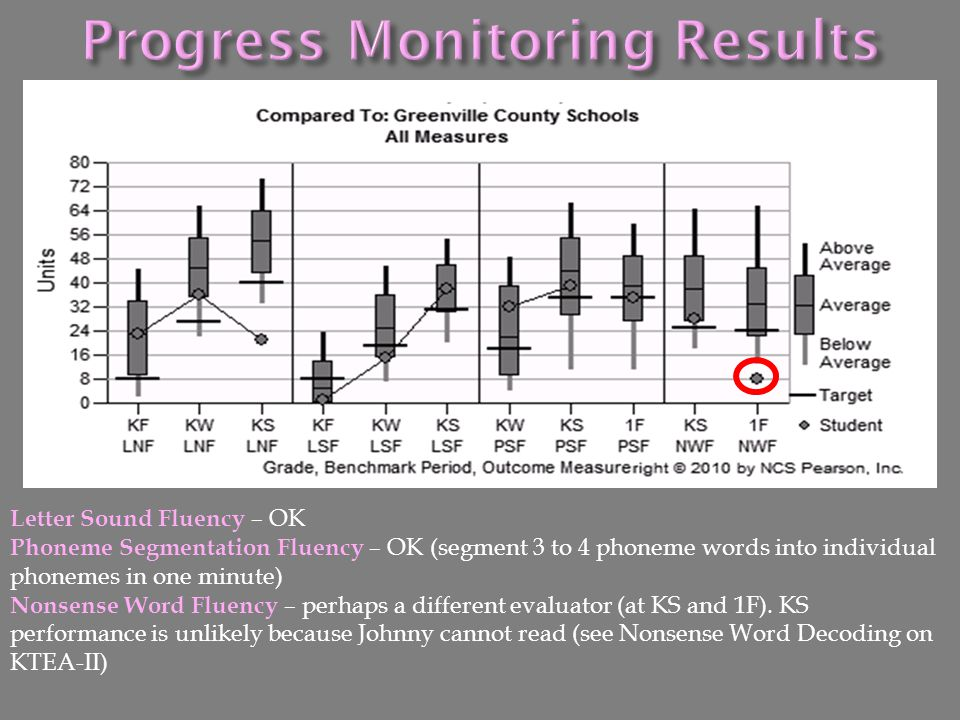 Progress Monitoring Results