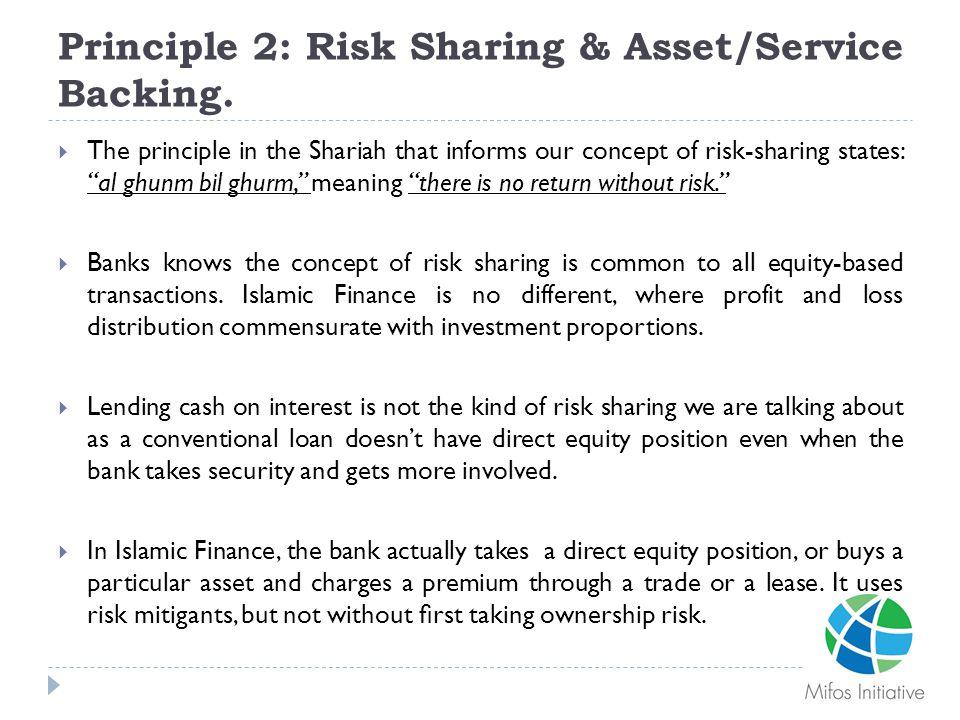 Principle 2: Risk Sharing & Asset/Service Backing.