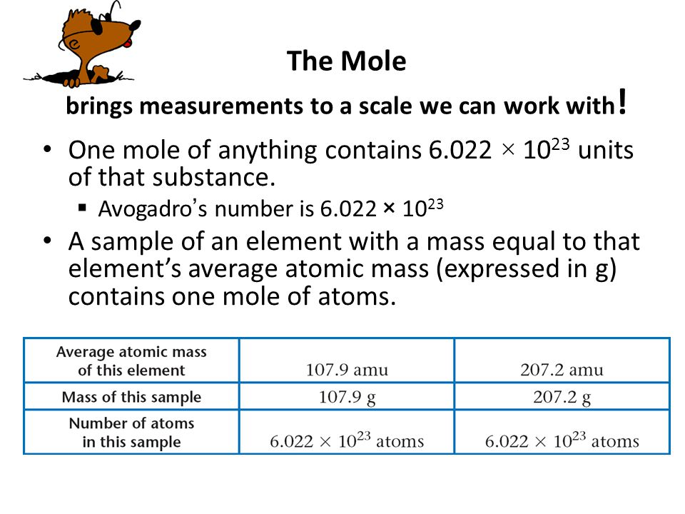 The Mole brings measurements to a scale we can work with!