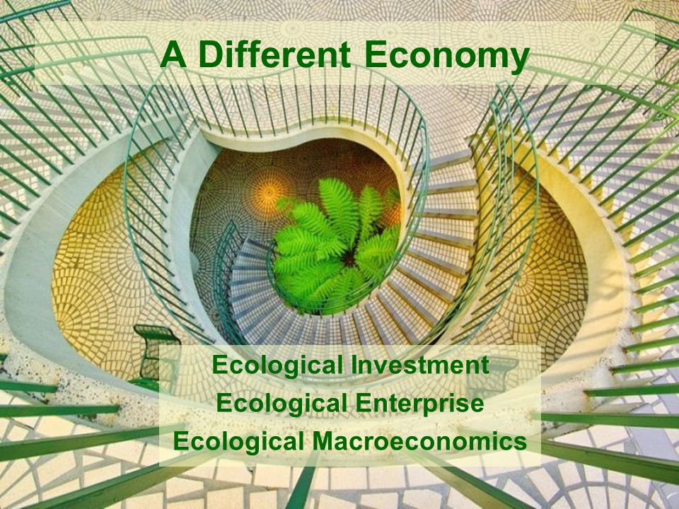 Ecological Investment Ecological Enterprise Ecological Macroeconomics