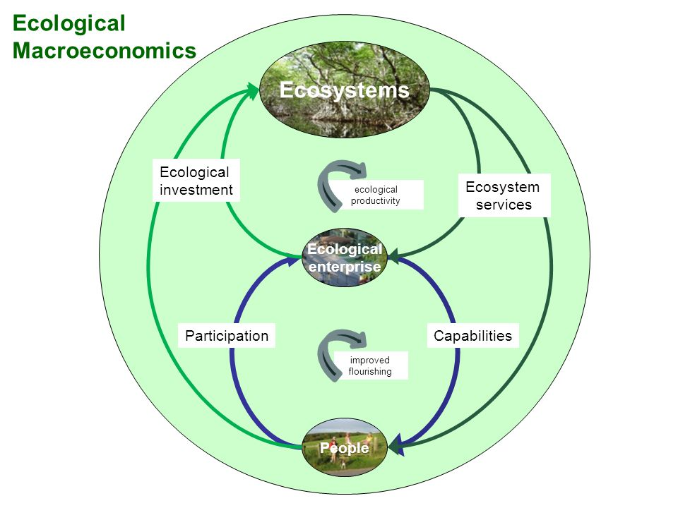 Ecological Macroeconomics