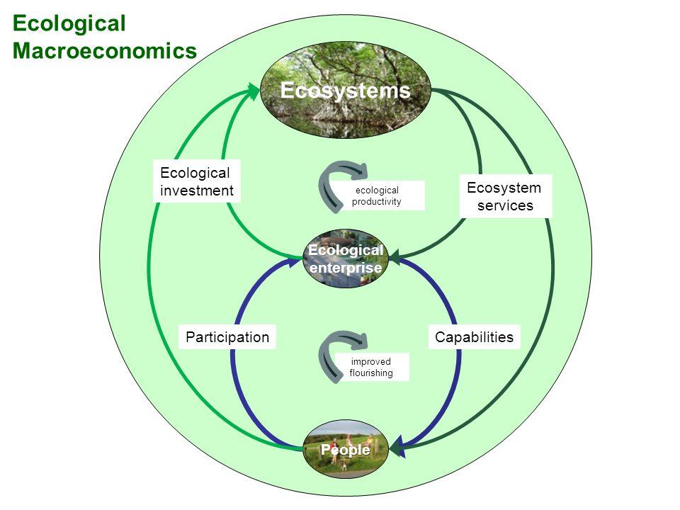 Ecological Macroeconomics