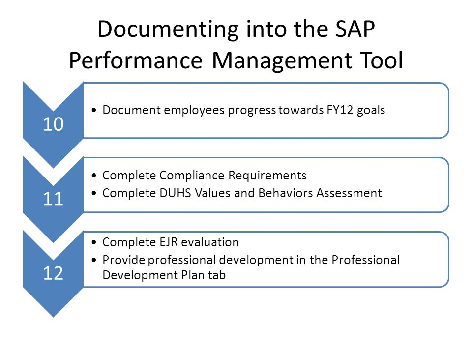 Documenting into the SAP Performance Management Tool