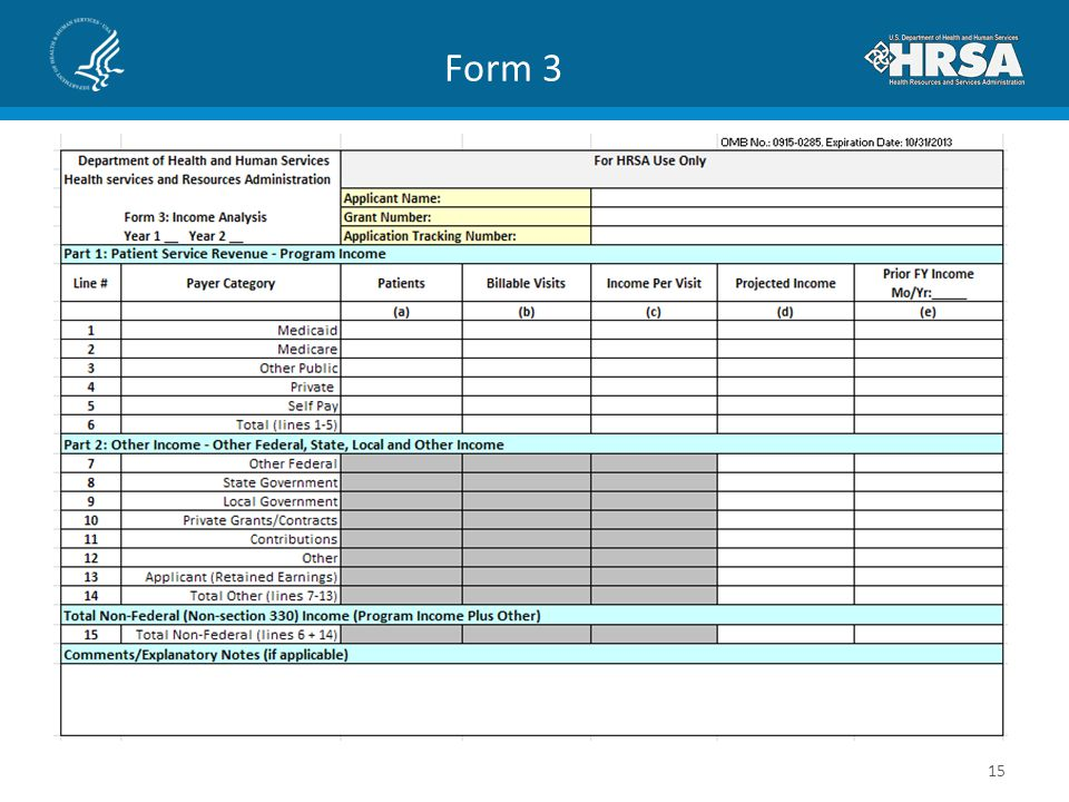 Form 3 Slide 15 is a screenshot of the Form 3: Income Analysis.