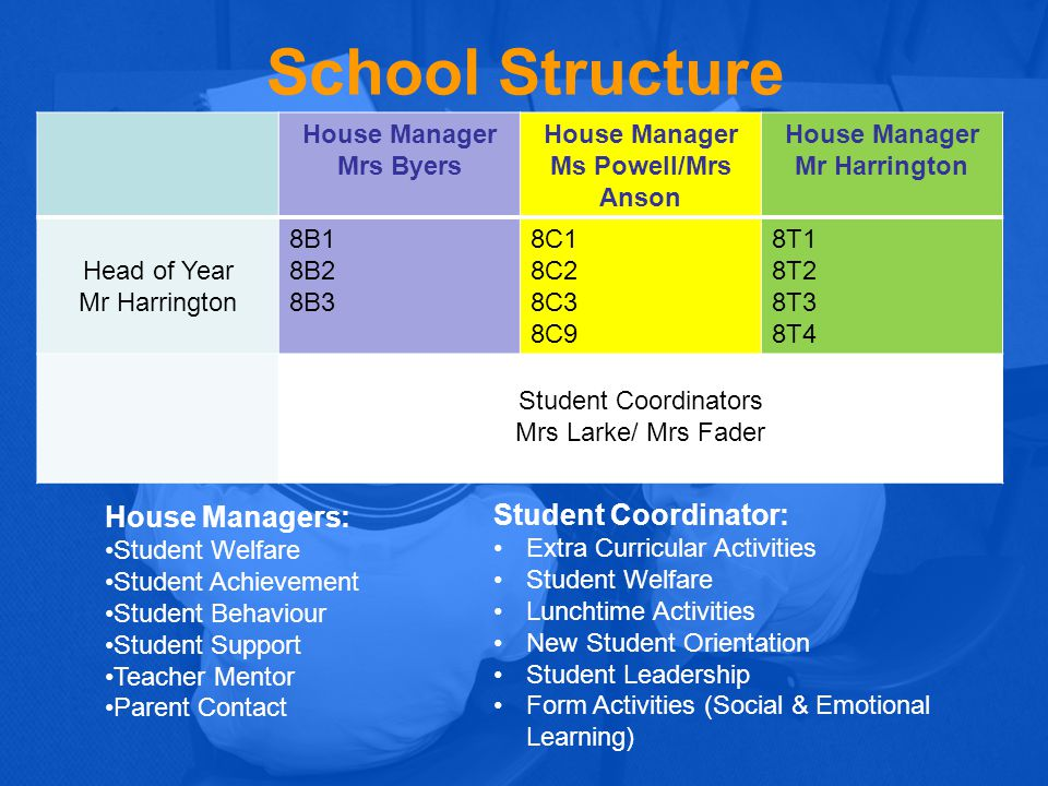School Structure House Managers: Student Coordinator: House Manager
