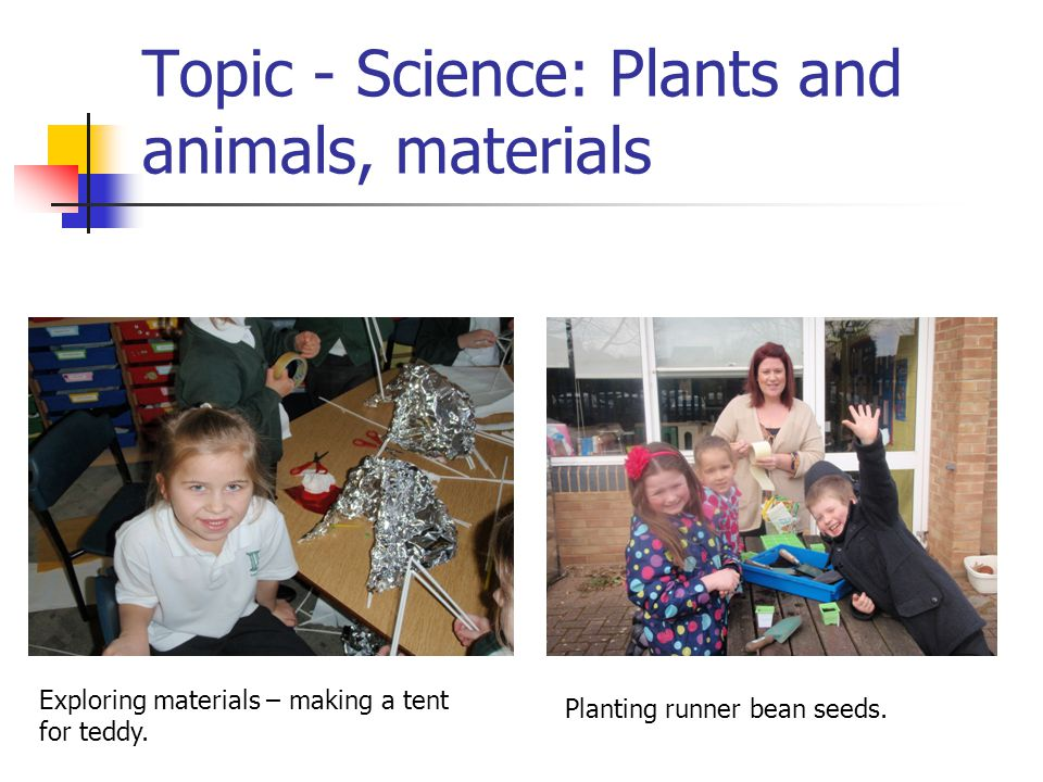 Topic - Science: Plants and animals, materials