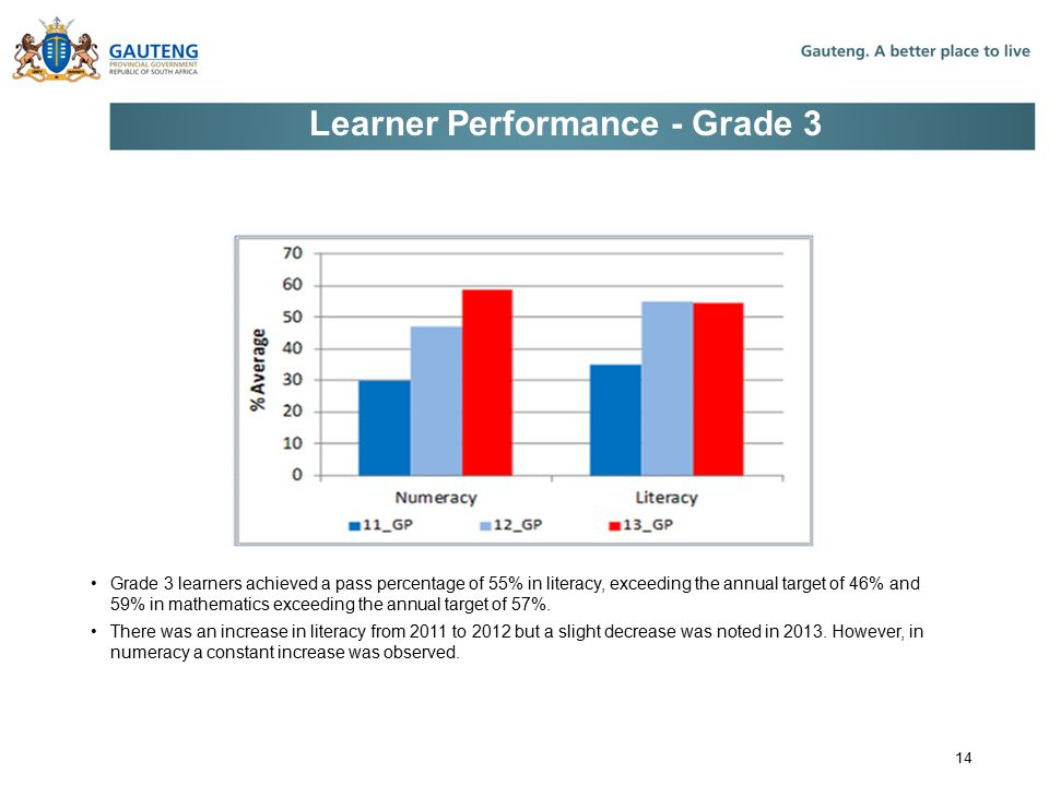 Learner Performance - Grade 3