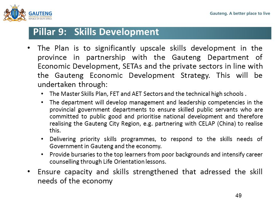 Pillar 9: Skills Development