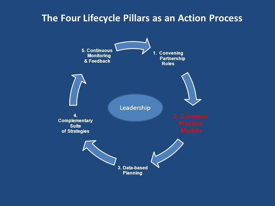 The Four Lifecycle Pillars as an Action Process