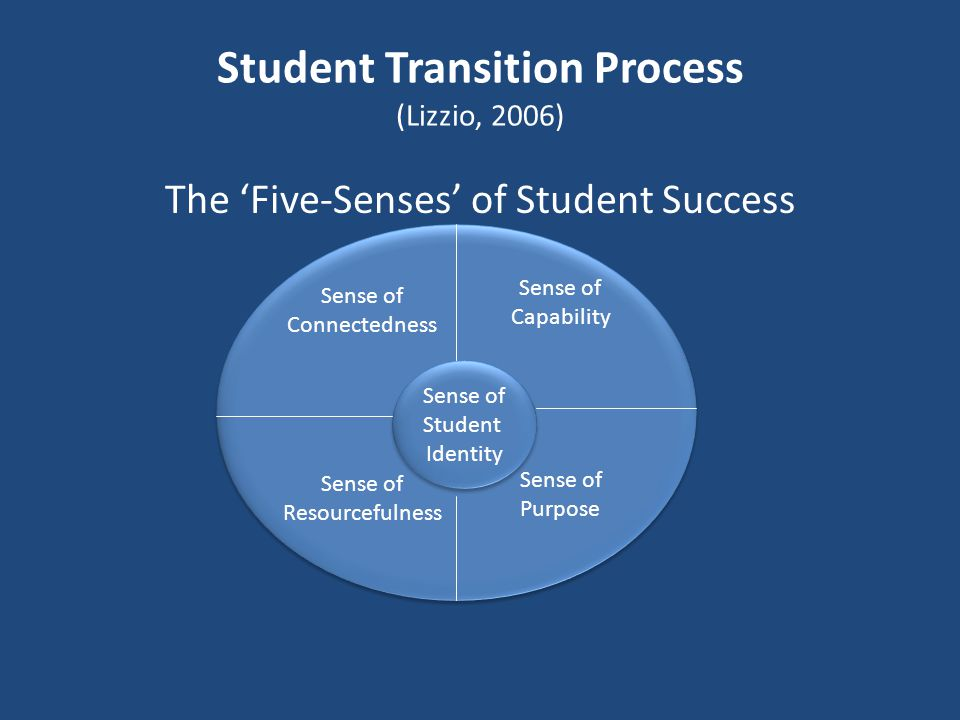Student Transition Process (Lizzio, 2006)