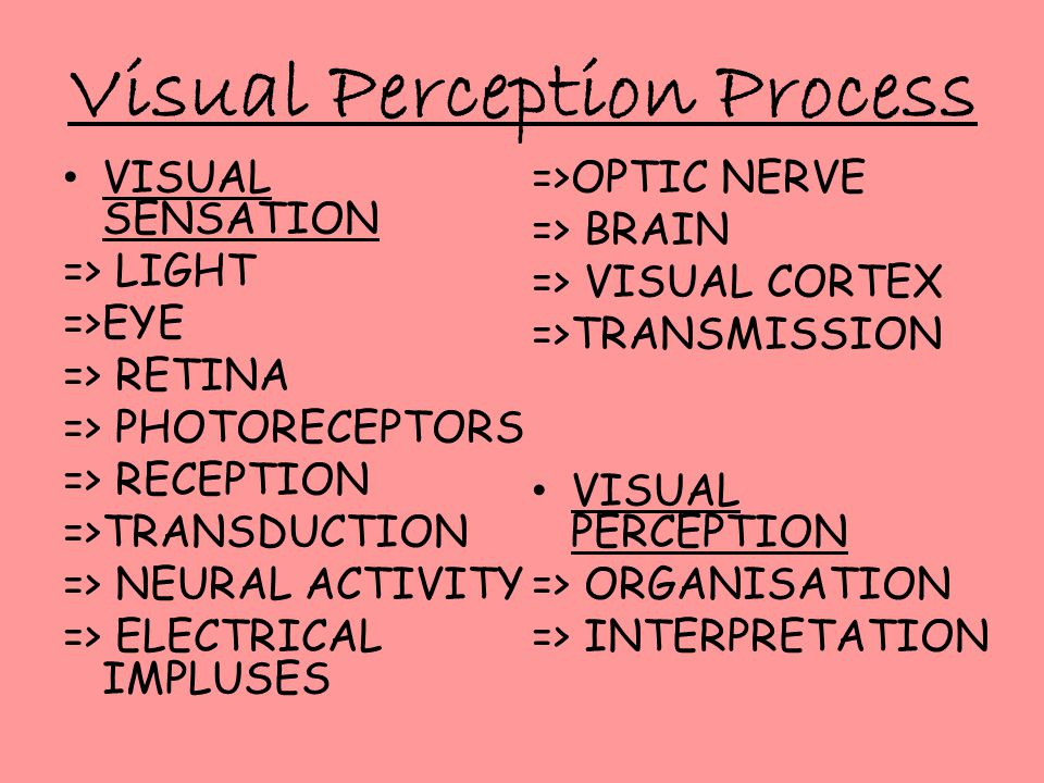 Visual Perception Process