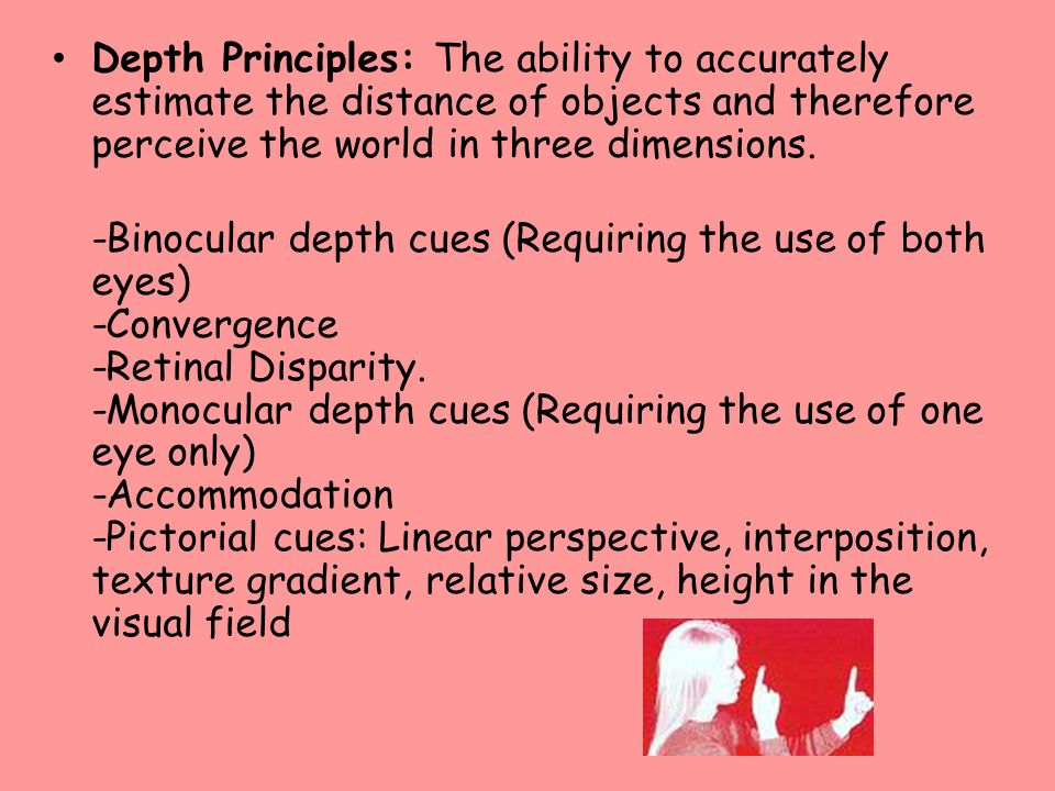 Depth Principles: The ability to accurately estimate the distance of objects and therefore perceive the world in three dimensions.