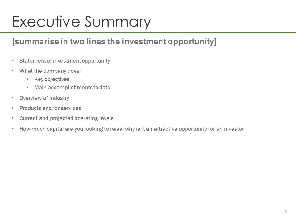 Executive Summary [summarise in two lines the investment opportunity]