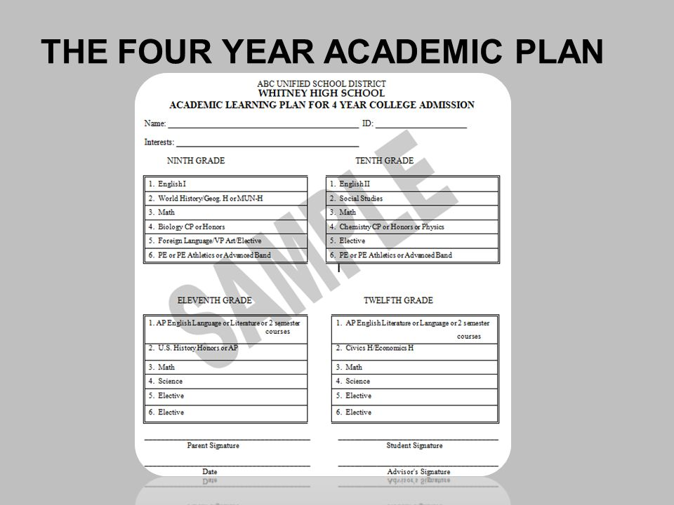 THE FOUR YEAR ACADEMIC PLAN