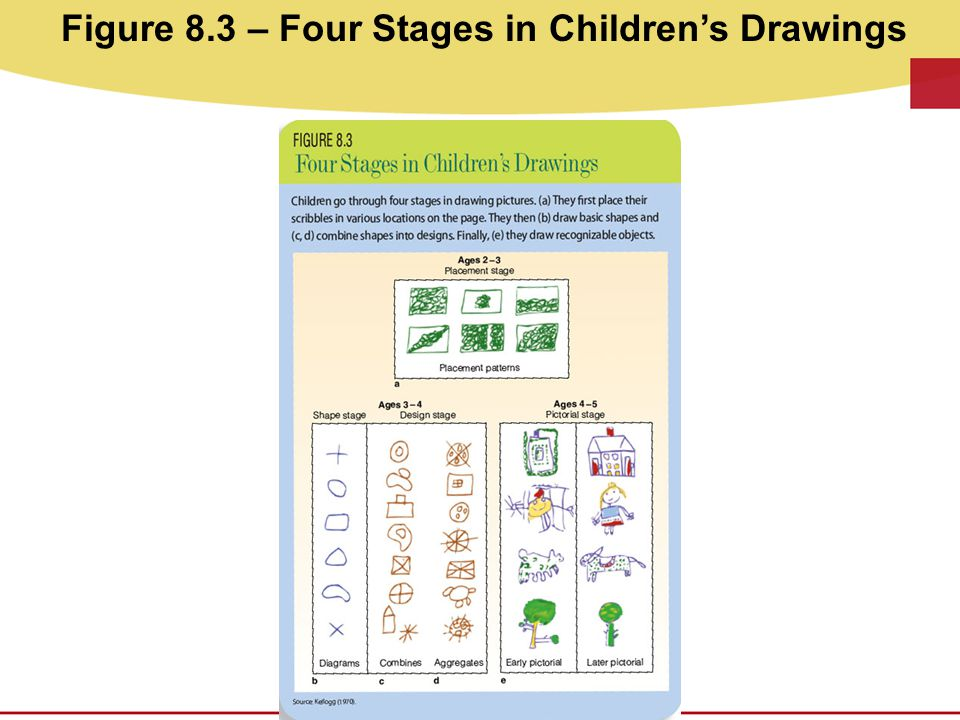 Figure 8.3 – Four Stages in Children's Drawings