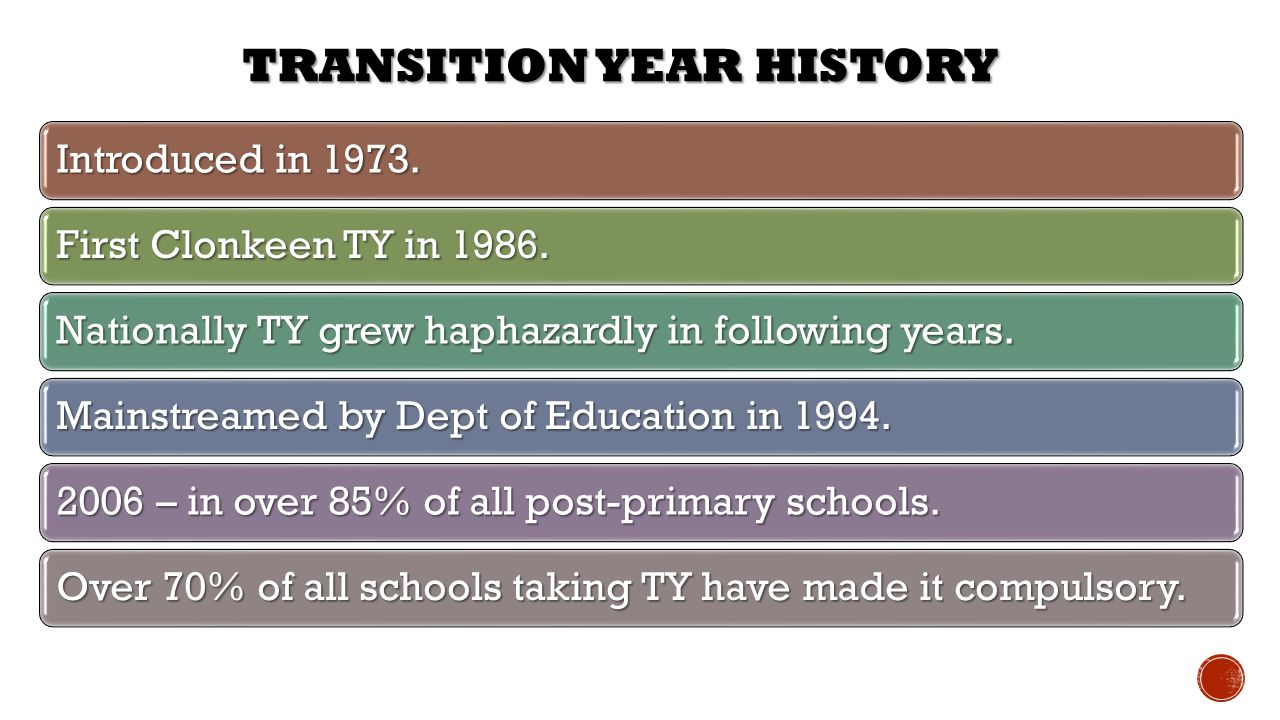 Transition Year History