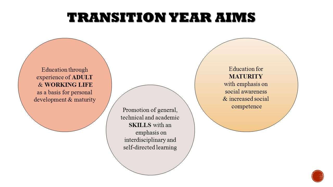 Transition Year Aims Education for Education through MATURITY