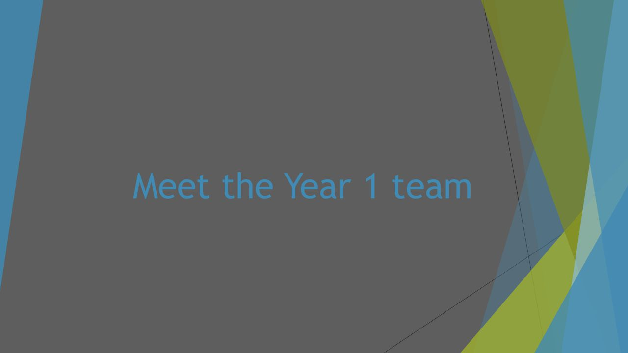 Meet the Year 1 team