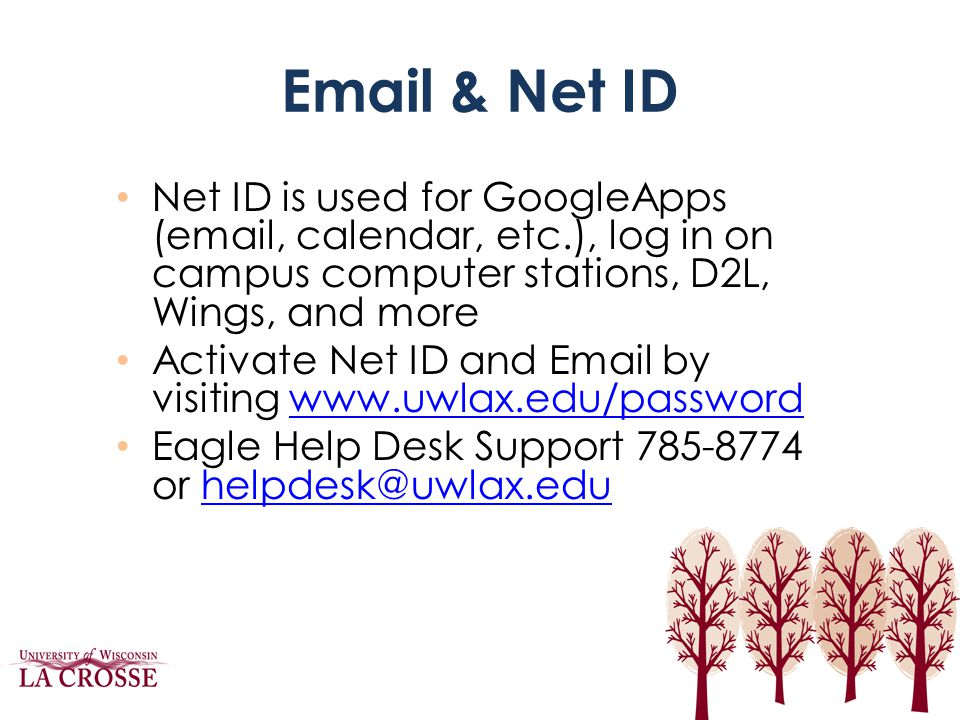 Email & Net ID Net ID is used for GoogleApps (email, calendar, etc.), log in on campus computer stations, D2L, Wings, and more.