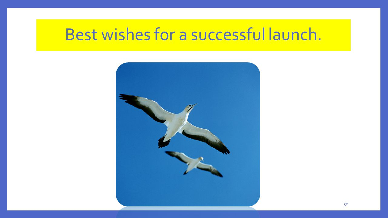 Best wishes for a successful launch.