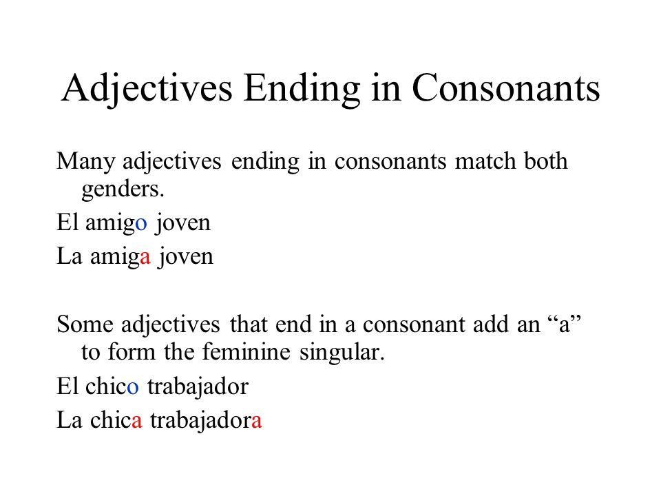 Adjectives Ending in Consonants