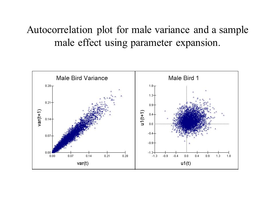 Autocorrelation plot for male variance and a sample male effect using parameter expansion.