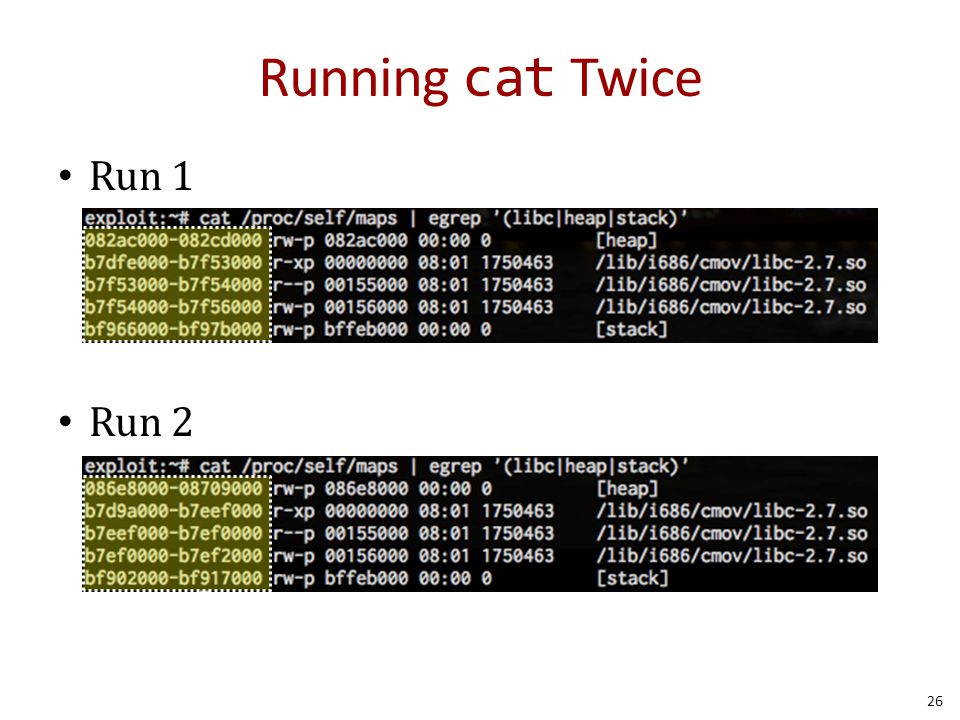 Running cat Twice Run 1 Run 2