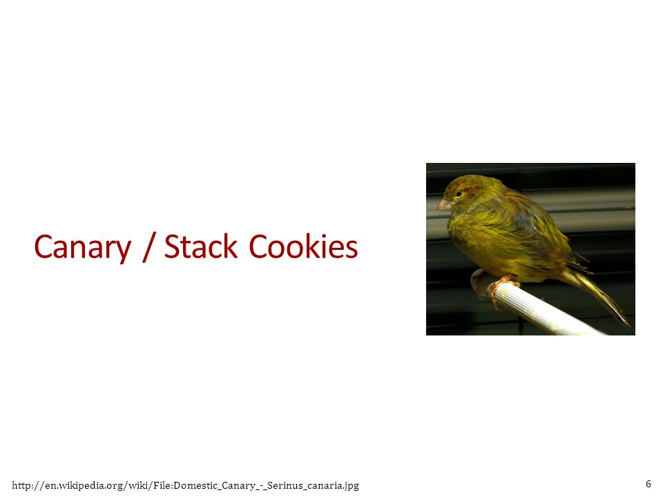 Canary / Stack Cookies detect buffer overflow before a function returns.