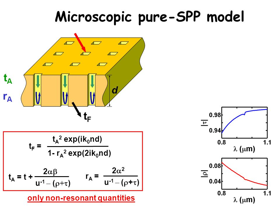 Microscopic pure-SPP model