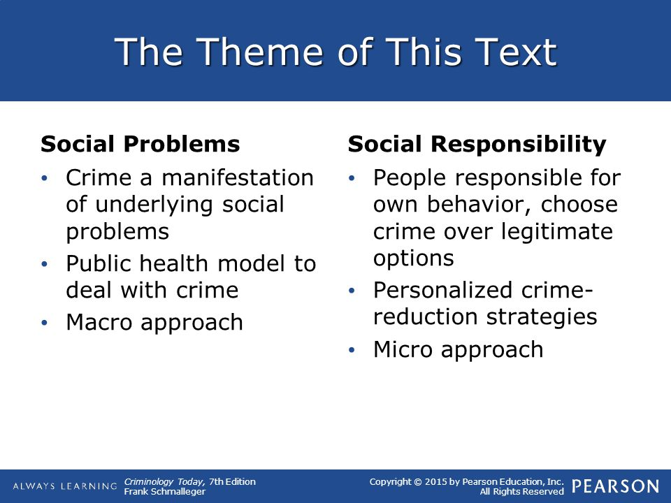 The Theme of This Text Social Problems Social Responsibility