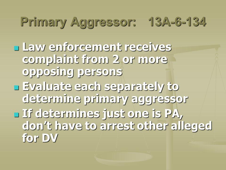 Primary Aggressor: 13A-6-134