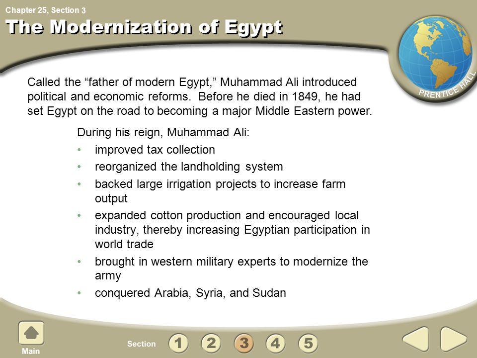 The Modernization of Egypt
