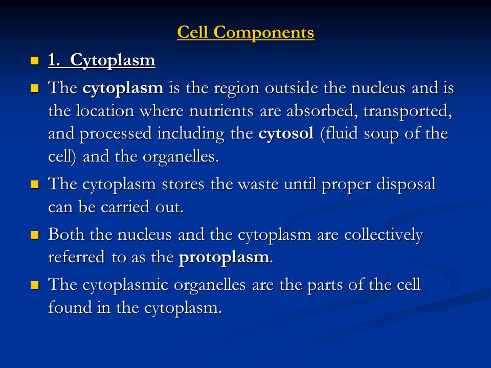 Cell Components 1. Cytoplasm.