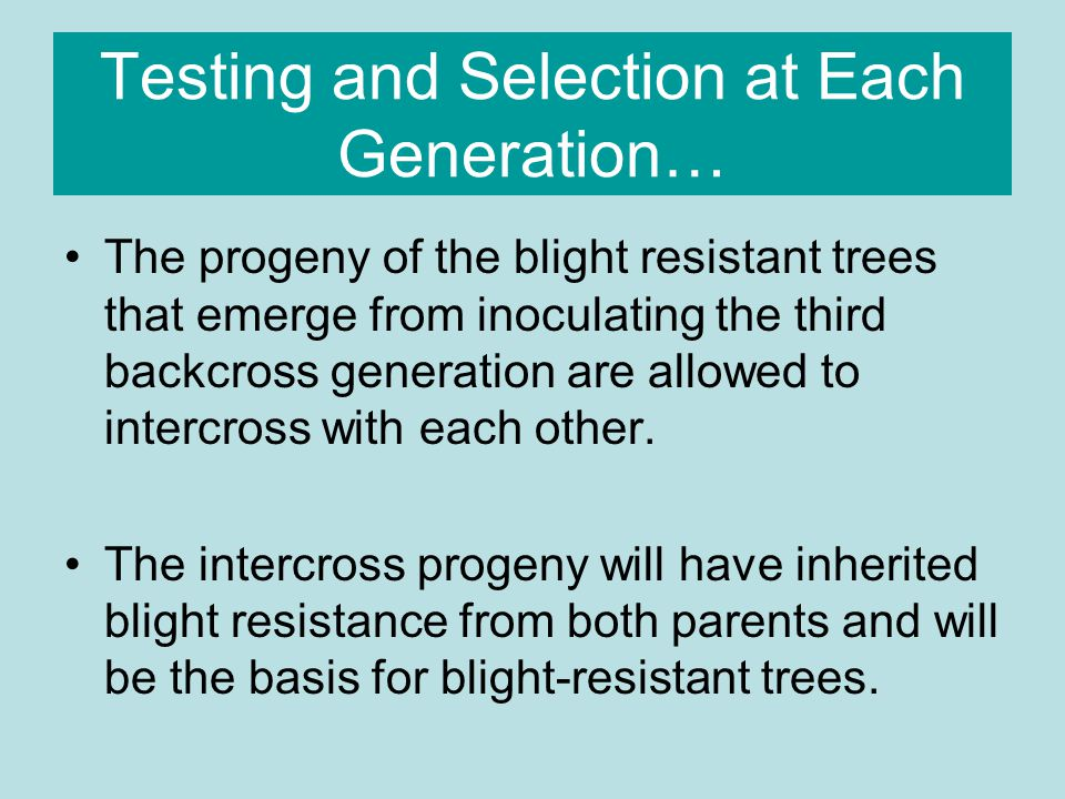 Testing and Selection at Each Generation…