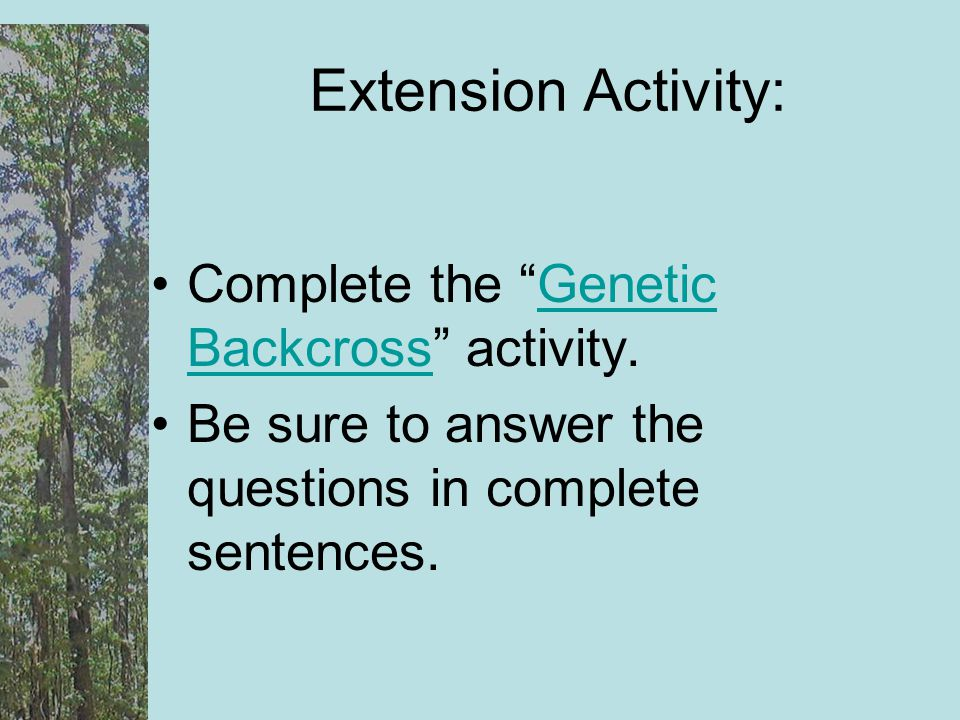 Extension Activity: Complete the Genetic Backcross activity.