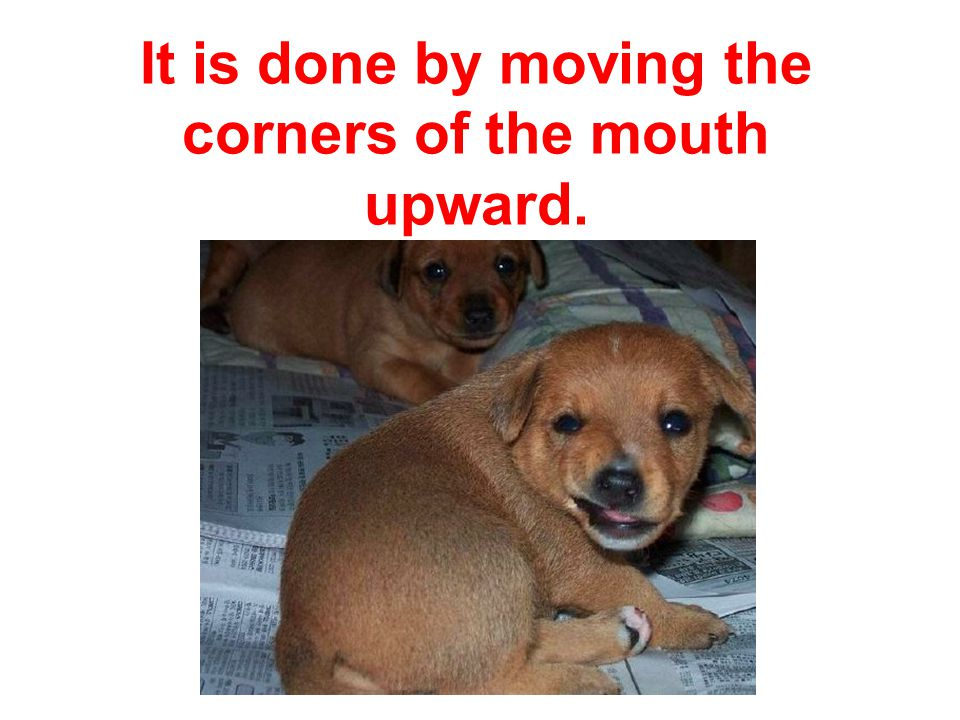It is done by moving the corners of the mouth upward.
