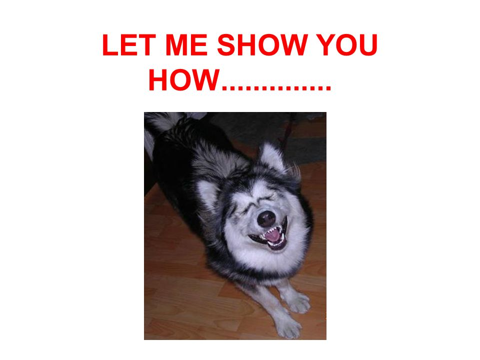 LET ME SHOW YOU HOW..............