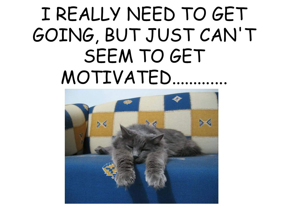 I REALLY NEED TO GET GOING, BUT JUST CAN T SEEM TO GET MOTIVATED.............