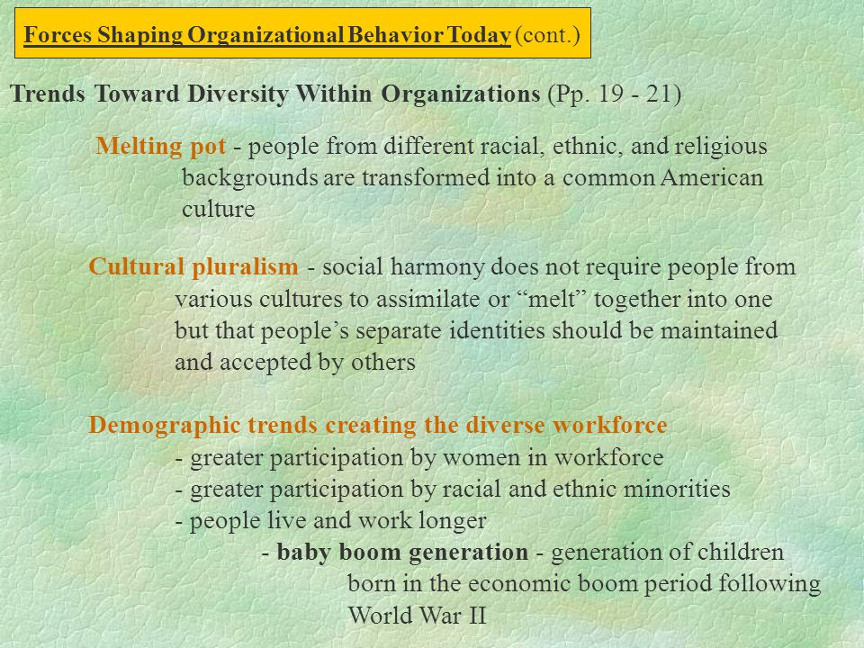 Trends Toward Diversity Within Organizations (Pp. 19 - 21)