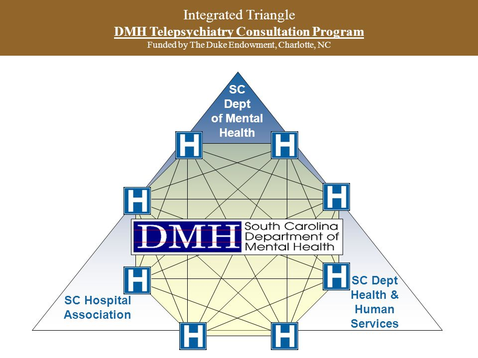 Integrated Triangle DMH Telepsychiatry Consultation Program Funded by The Duke Endowment, Charlotte, NC