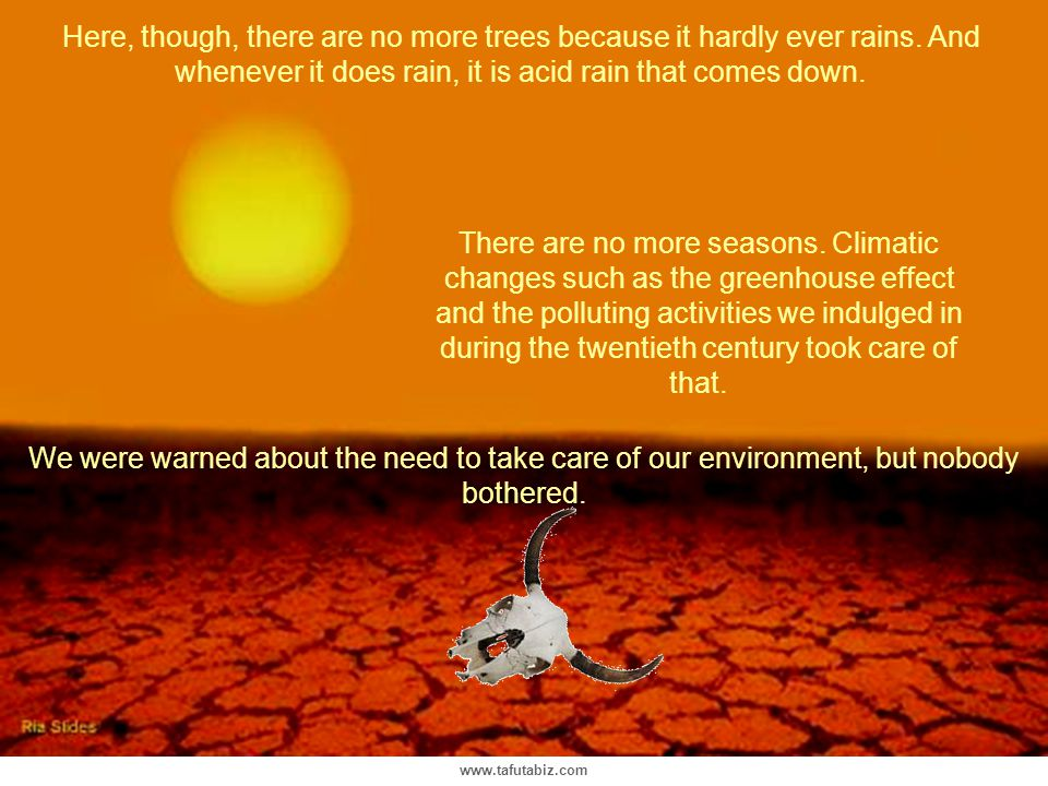 Here, though, there are no more trees because it hardly ever rains