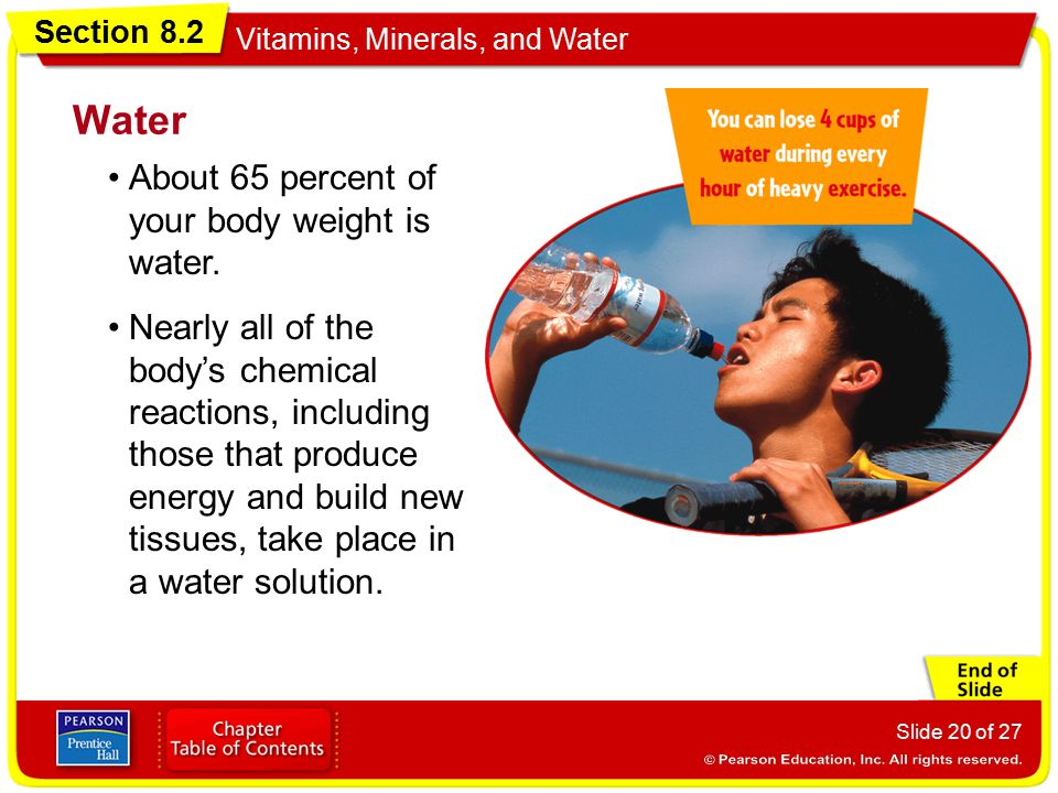Water About 65 percent of your body weight is water.
