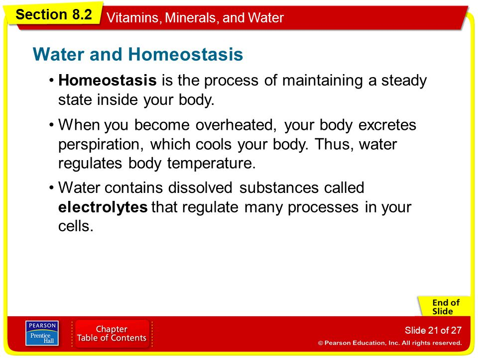 Water and Homeostasis Homeostasis is the process of maintaining a steady state inside your body.